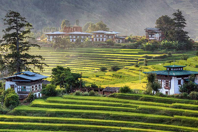 Overnight in the homestay and experience a farming tour