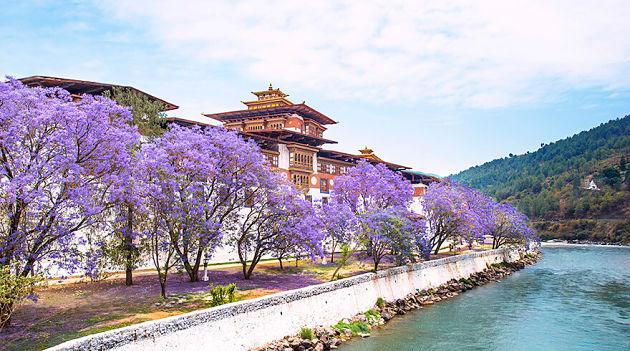 Spring in Bhutan tour itineraries