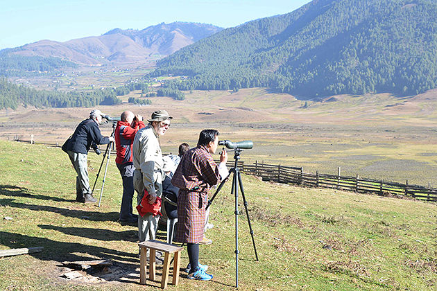 punakha valley - birding trip in bhutan