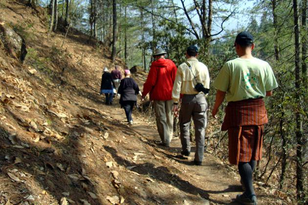 bhutan birding trip 6 days