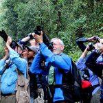 thimphu valley - bhutan birding trips