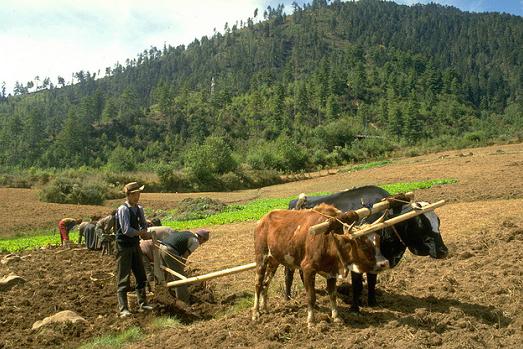 Bhutan Economy