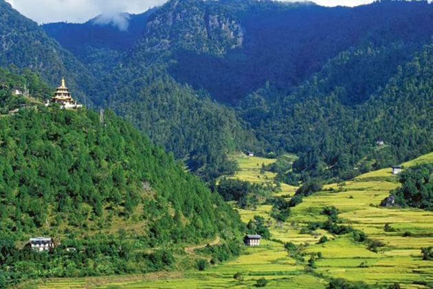 Bhutan Environment | Forest and Wildlife Conservation in Bhutan