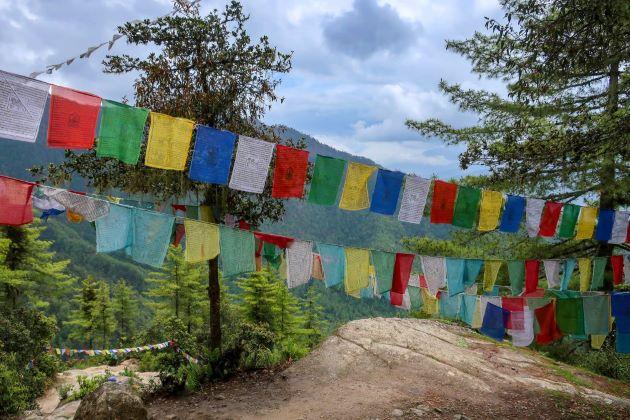 Chele La pass in bhutan