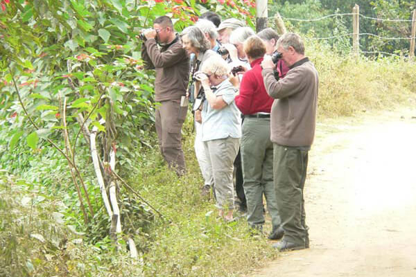 bhutan birding trip