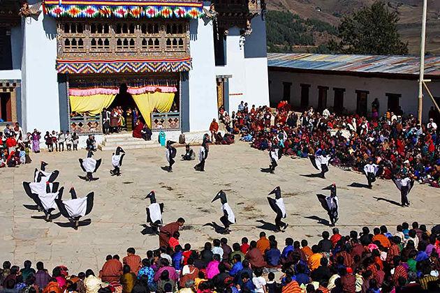 black necked crane tshechu - best bhutan festival tour