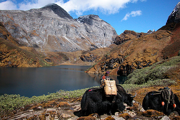 dagala thousand lakes trek - bhutan trekking tours