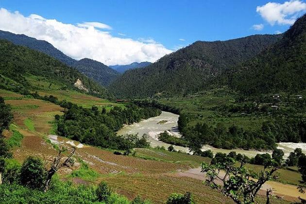 jigme dorji national park - bhutan environment