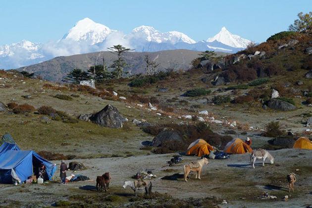 jomolhari laya gasa trek - trekking in bhutan