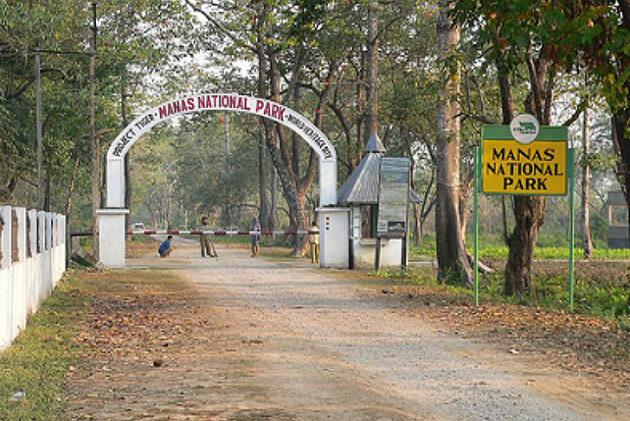 manas royal national park