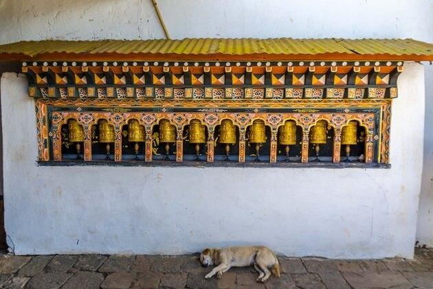 The Gigantic Prayer Wheels -chimi lhakhang monastery