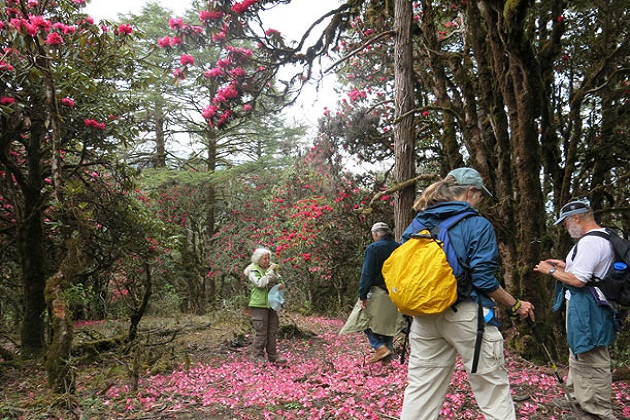 bhutan trekking tours spring