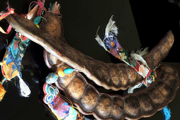bhutan traditional instruments - Yangkali