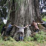 Ningula - bhutan tour itinerary