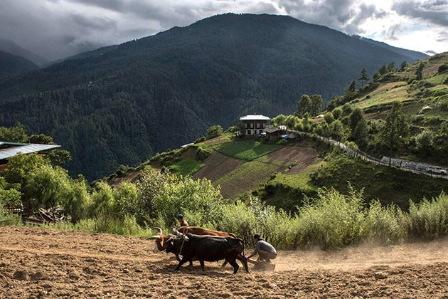 haa valley - bhutan honeymoon places
